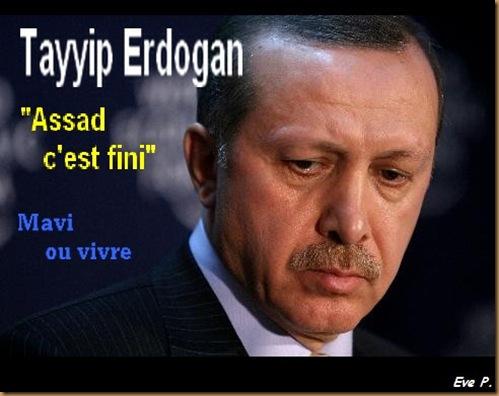 erdogan-eve p.
